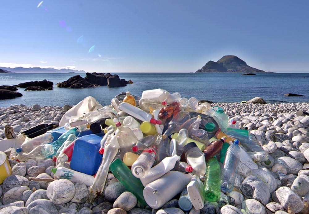 Marine plastic macro-litter will gradually become microplastics and ultimately nanoplastics.