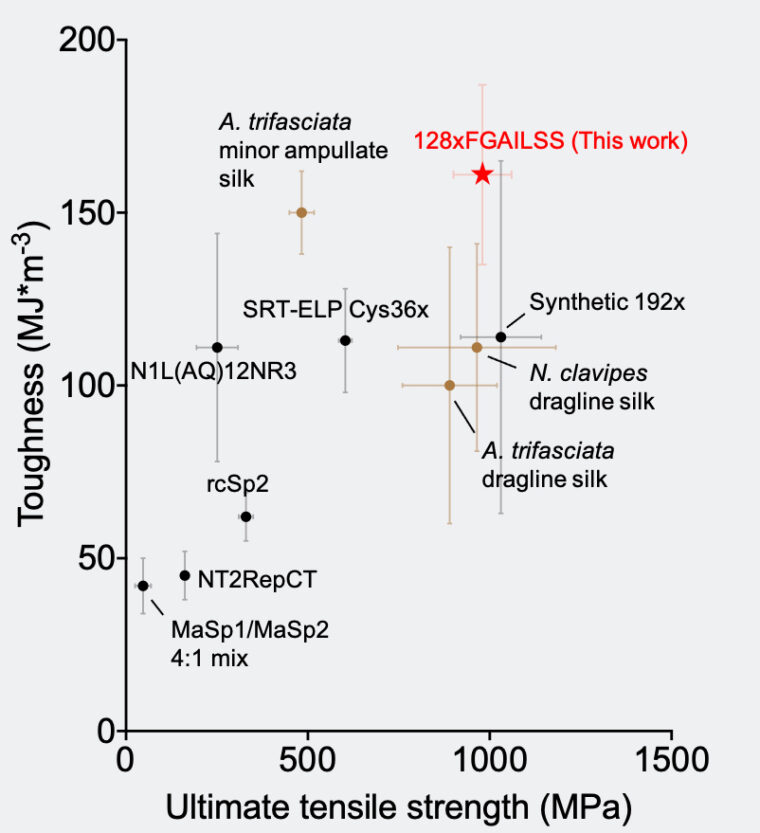 Chart compares the toughness and strength of different natural and recombinant silk fibers