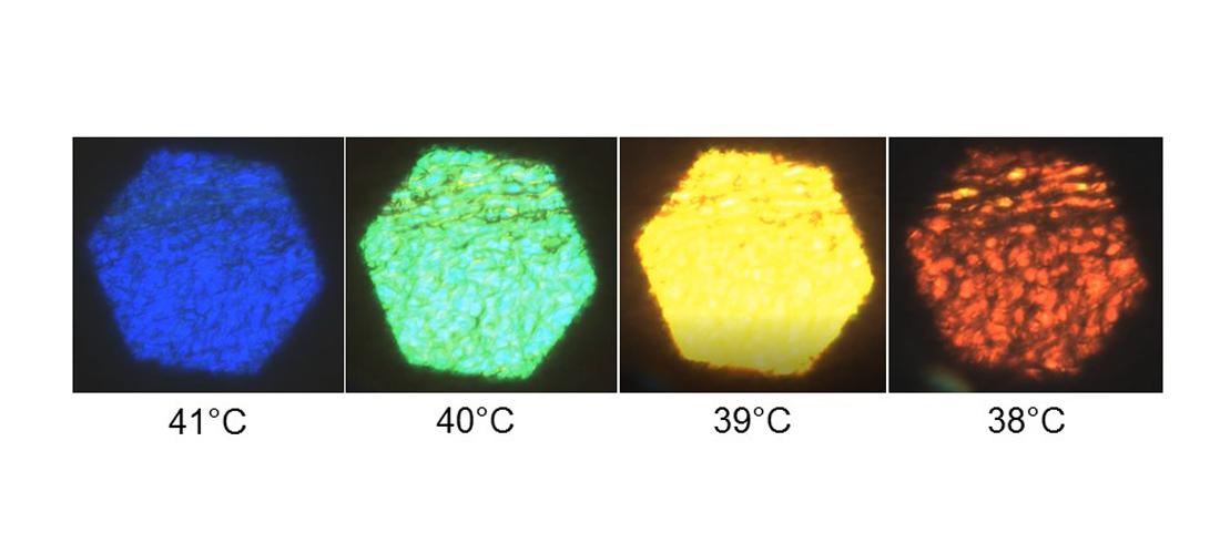 Polarized light microscopy of liquid crystal