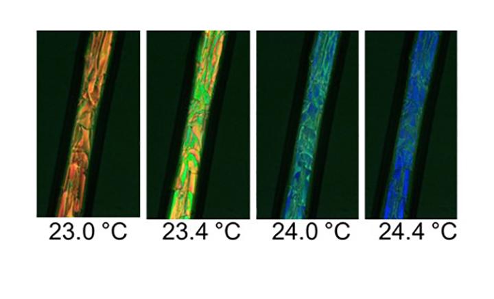 Polarized light microscopy of coaxially electrospun PVP shell and LC core fiber