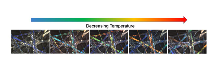 Polarized light microscopy images of coaxially electrospun PVP shell and LC core fiber