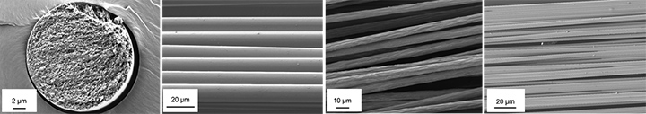Scanning electron microscopy images of HighPerCell biopolymer fibers