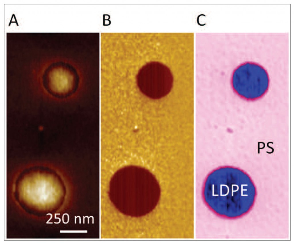 Figure 2. Topography of a PS-LDPE blend (A), differences in moduli (B) and IR reflections at 1880 cm-1 (C). Courtesy of Bruker Corporation