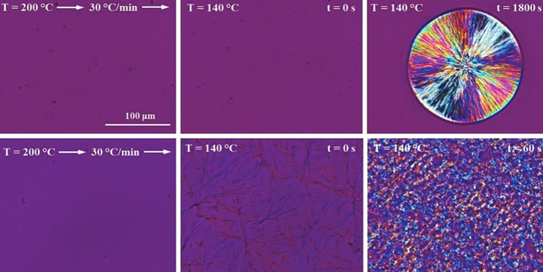 Bio-Based Nucleating Agent with PLA